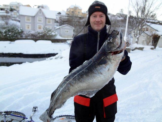 Seifiske med Harald og Aksel